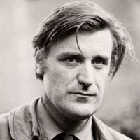 Ted Hughes pike analysis